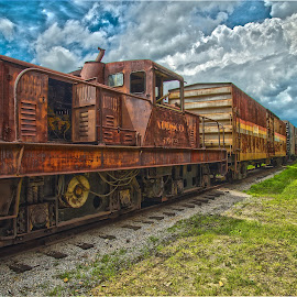 Heart of Dixie 2 by Scott Cobb - Transportation Trains ( clouds, dixie, sky, hdr, grass, engine, train, alabama )