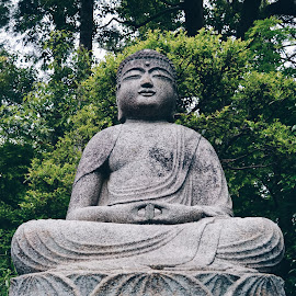 Buda by Valentina Cantera - Buildings & Architecture Statues & Monuments ( kyoto, natural, japan, nature, bush, asia, japanese gardens, bushy, japanese garden, peaceful, japanese, bushes, peace, worship, buda, japanese culture )
