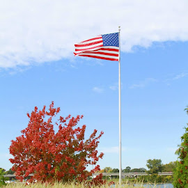 Old Glory  by Jesse LaForest - Public Holidays July 4th