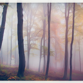 The Ghost of Autumn by Dominic Wade - Digital Art Places ( woodlands, autumn, spooky, digital art, adobe photoshop, trees, ghost, digital painting, topaz labs, google nik software, halloween )