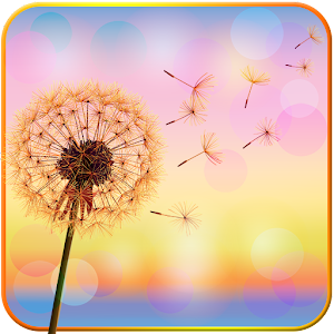 Dandelion Flower LiveWallpaper