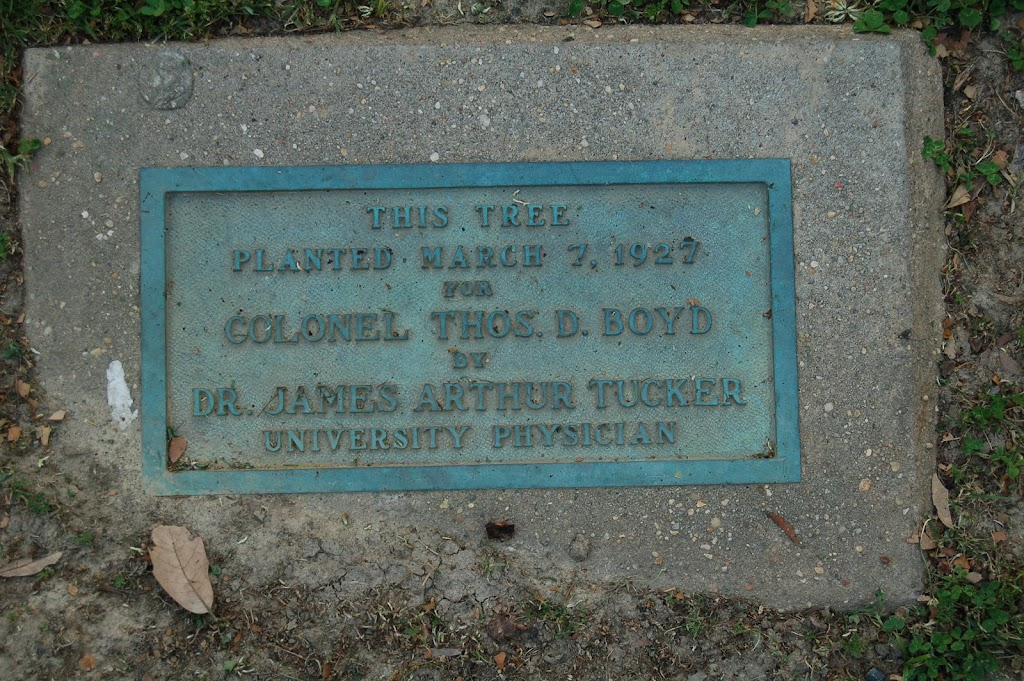 This TreePlanted March 7, 1927ForColonel Thos. D.BoydByDr. James Arthur TuckerUniversity Physician