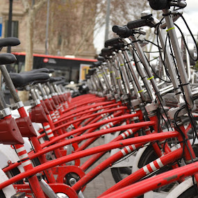 Red Bikes  by Ewan Allardice - Transportation Bicycles
