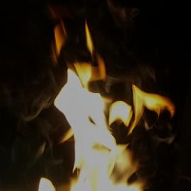 Fire Dragon by Lisa Hansen - Abstract Fire & Fireworks ( dragon, campfire, smoke, fire, flame )