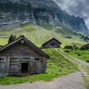 Appenzell Alp, Switzerland by Horizon Photo - Landscapes Prairies, Meadows & Fields ( appenzell alp, switzerland )