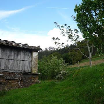 Solmayor