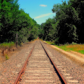 The End Of The Line by Vince Scaglione - Transportation Railway Tracks ( railway, rail, track, line, train, tracks, end )