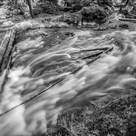 Paulina Creek by Gary Piazza - Nature Up Close Water ( water, paulina creek, waterfalls, black and white, desrt, creek, central oregon, river )