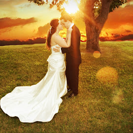 Sunshine Sugar by Andrea Renee - Wedding Bride & Groom ( kiss, tree, nature, sunset, wedding, outdoors, bride, groom )