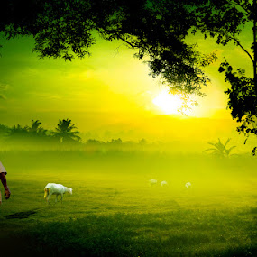 Goat Morning by D'cast Photowork - Digital Art Things