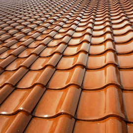 Tiled Roof by Rahmat Nugroho - Artistic Objects Furniture ( rainy, under construction, slate, watery, house, architecture, roofer, heap, sky, striped, grey, industry, construction, rain, timber, roof tile, in a row, repairing, home improvement, gray, single line, roof, red, watery sky, contemporary, tile, improvement, real estate, installing, stack, built structure, design, low angle view )