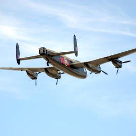 Lancaster Returns Home. by Virginia Hurley - Transportation Airplanes ( #history, #military, #lancaster, #hamilton, #amazingmachine, #flying )