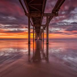 Under the Jetty by Steve Badger - Buildings & Architecture Bridges & Suspended Structures ( australia, pier, new south wales, jetty, sunrise, fingal )