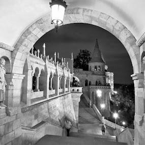 by Kinga Urban - Black & White Buildings & Architecture ( budapest, building, black and white, architectural, travel,  )