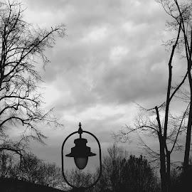 Lamp by Nevena Jovanović - City,  Street & Park  City Parks