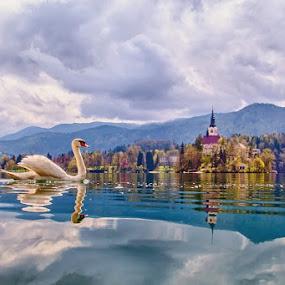 Bled by Albin Bezjak - Landscapes Travel
