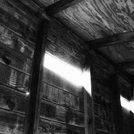 Abandoned Home by Michael Nunes - Nature Up Close Webs ( #light, #web, #black&white, #spider, #abandoned )