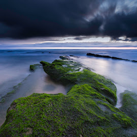 The Green Ledge by Nigel Smith - Landscapes Waterscapes ( clouds, water, canon, waterscape, seascapes, green, 60d, moss, sea, 10mm, seascape, seaside, canonlandscape, eos, canon eos 60d, sigma, guincho, portugal )