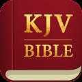 App KJV Bible 365 APK for Kindle