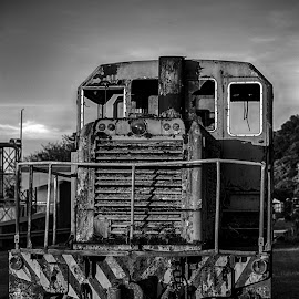 Left where it broke down by Gary Tindale - Transportation Trains ( railway, christmas island, train, rust, decaying,  )