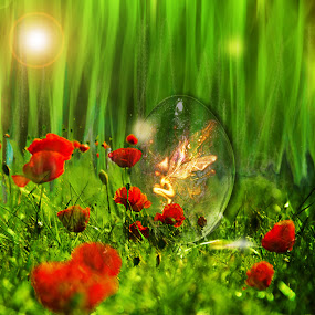 fairy'sbirth by Ilaria Rosa - Digital Art Places ( grass flower, fairy cristall ball, green, light )