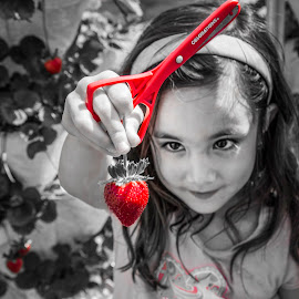 Berry, berry red! by Maurizio Riccio - Babies & Children Children Candids ( b&w, girl, candid, strawberry, portrait, strawberry patch, kid, strawberry picking )