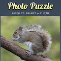 Game Puzzle Squirrel Game APK for Kindle