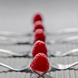 Berries, berries all in a row by Jess van Putten - Food & Drink Fruits & Vegetables ( forks, fruit, still life, digital art, raspberries )