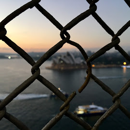 View from Sydney Harbour Bridge  by Angela Taya - Novices Only Landscapes