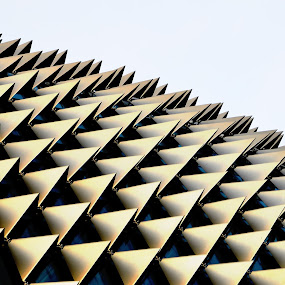 roof by Fresco Jr Linga - Abstract Patterns ( abstract diamonds )