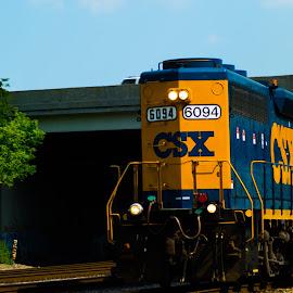 CSX Engine by Charles Shope - Transportation Trains ( natural light, color, csx, overpass, outdoor, trees, train, bridge, transportation, tracks )