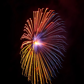 Red, Blue and Yellow Firework  by Ruben  Paul - Abstract Fire & Fireworks ( red, blue, malta, 2015, fujifilm, fireworks, yellow, hal luqa )