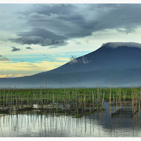 Rawa Pening Lake in the morning by Robby Kurnia - Landscapes Mountains & Hills
