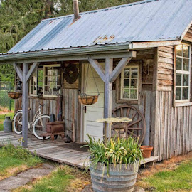 The Little Shack by Judy Heitzman - Buildings & Architecture Other Exteriors