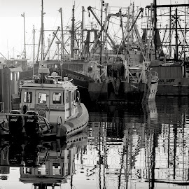 New Bedford Harbor (b&w) by John Hoey - Black & White Landscapes ( harbor, b&w, black and white, aj photographic art, boats, travel, new bedford, dock, monochromatic, new england, ma, massachusets, pier, ships, maritime )