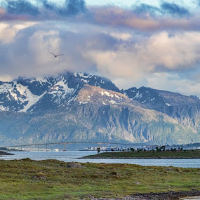 Panoramic of Sortland by Benny Høynes - Landscapes Prairies, Meadows & Fields ( mountains, meadow, landscapes, panoramic, fields, norway, city )