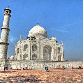 Taj Mahal, Agra, India by Mohamed Nasser - Buildings & Architecture Public & Historical (  )