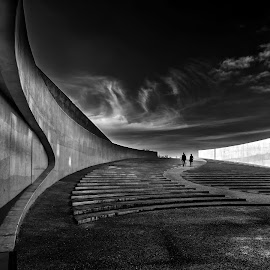 The Entrance  by Wim Denijs - Buildings & Architecture Architectural Detail ( stairs, black and white, bridge, architecture, vroenhoven )