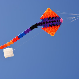 orange,stingray by Rachel Rachel - Artistic Objects Toys ( orange, sky, blue, kite, stingray,  )