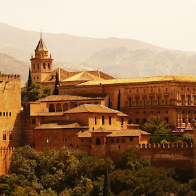 Alhambra, Granada by Gabrielle Phillips - Buildings & Architecture Public & Historical