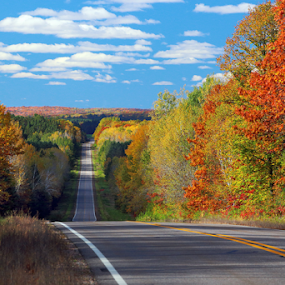 North Woods Color by Skip Spurgeon - Transportation Roads ( hill, wisconsin, fall colors, road,  )