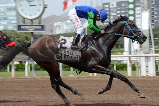 Mrs Hope (Preachintothedevil) brilla en Handicap (1000m-Arena-MONT).