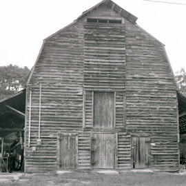 B/W LARGE BARN WITH SHELTERS  by Douglas Edgeworth - Buildings & Architecture Architectural Detail