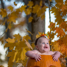 Punkin by Bob White - Babies & Children Babies ( picoftheday, color, pumpkin, fall, baby, portrait )