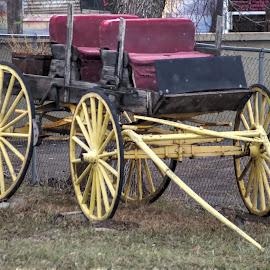 by D.M. Russ - Transportation Other ( idaho, buggy, d.m. russ )
