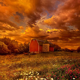 In A Heartbeat by Phil Koch - Landscapes Prairies, Meadows & Fields ( canon, trending, arts, green, joy, camera, beautiful, forest, woods, sun, rural, love, fineart, season, unity, shadow, peace, popular, dramatic, sunrise, flowers, light, inspirational, hope )