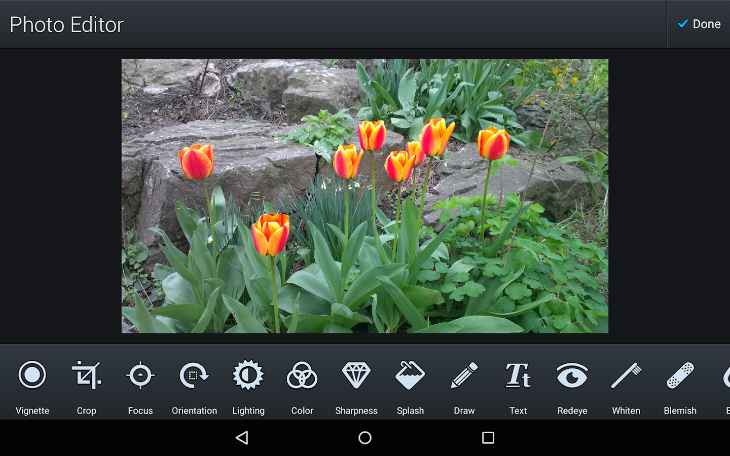 Darkroom Gallery Photo Editor Screenshot 7