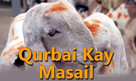 Qurbani Kay Masail - screenshot