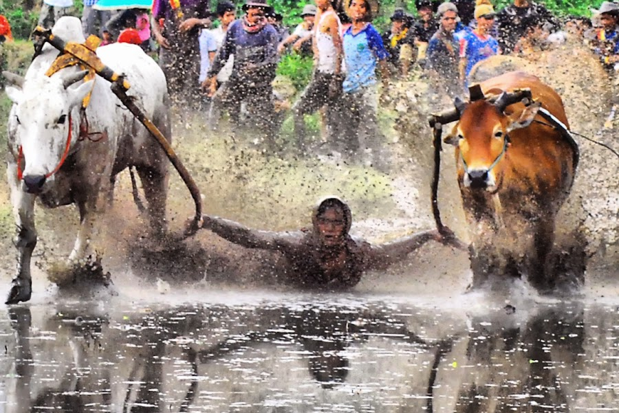 Take off.. by Febriyanto Sutan Pamenan - News & Events Sports