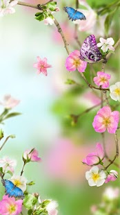 Flowers Live Wallpaper for pc